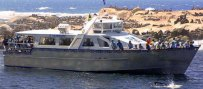 Hout Bay Boat Charter Cruises Cape Town.